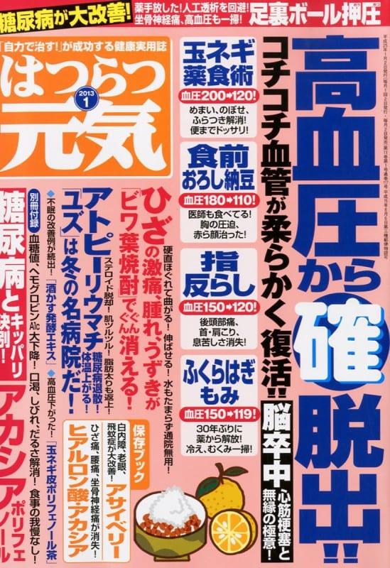 はつらつ元気 2013年1月号 「自力で治す!」が成功する健康実用誌