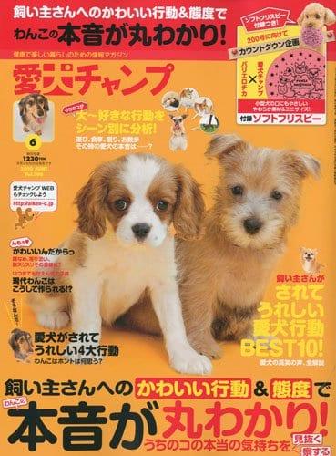 愛犬チャンプ 2010年6月号