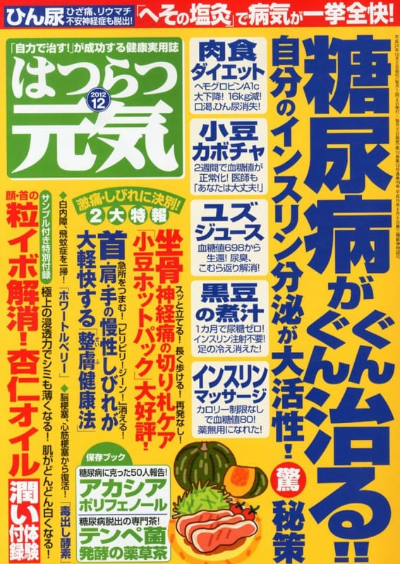 はつらつ元気 2012年12月号表紙