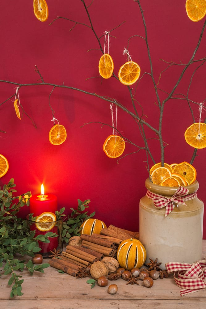 Winter display of dried Citrus fruit, Cinnamon sticks, Hazelnuts and Eucalyptus