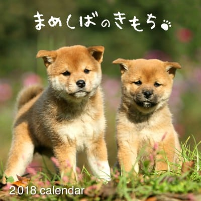 まめしばのきもちカレンダー2018