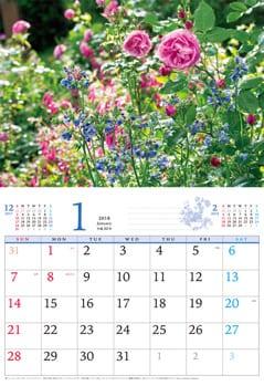 calendar2018_rose02