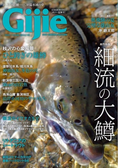 Gijie 2020夏秋号
